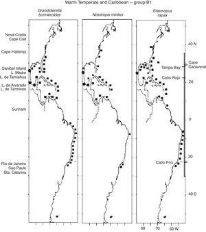 Distribution of Warm Temperate and Caribbean species. Group B1 (Grandidierella bonnieroides, Nototropis minikoi, Elasmopus rapax) along the Western Atlantic (■) including the Mexican lagoons (●).
