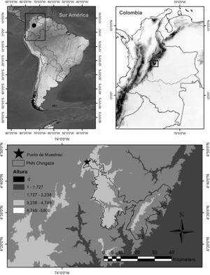 Ubicación geográfica del Parque Nacional Natural Chingaza, Colombia. La estrella en el recuadro de abajo indica la zona de estudio.