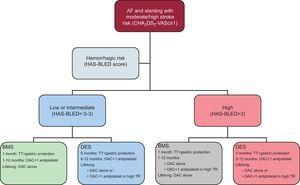 Recommendations for the duration of triple therapy and antithrombotic strategies in patients with atrial fibrillation at moderate-to-high thromboembolic risk and coronary stenting. AF, atrial fibrillation; BMS, bare-metal stent; DES, drug-eluting stent; OAC, oral anticoagulation; TR, thrombotic risk; TT, triple therapy (oral anticoagulation+acetylsalicylic acid [100mg/day]+clopidogrel [75mg/day]).