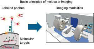 Schematic image showing the process of molecular imaging performance. Adapted from Weissleder et al.30