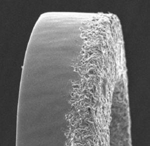 The surface of the polymer-free BioFreedom stent. A scanning electron microscopy image shows the micropores impregnated with biolimus A9 only in the albuminal side of the strut.