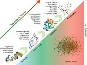 Systems biology. Regulatory processes at the DNA level affect the expression of downstream molecules, including RNAs, proteins, and metabolites. The effects of the different regulatory elements are additive. Systems biology attempts to analyze the interactions among the different molecular entities in order to offer a holistic view of biological processes and pathological changes occurring in disease.