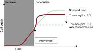 Illustration of the concept of reperfusion injury. During myocardial ischemia, cell death progresses. Reperfusion halts this process, but its benefit is limited by an increase in cell death during the first few minutes of reperfusion; this death can be avoided by using cardioprotective treatments at the time of flow restoration. PCI, percutaneous coronary intervention. Modified with the permission of Garcia-Dorado et al.27.