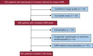 Patient flow chart. Reasons for exclusion from the study. CMR, cardiac magnetic resonance; LV, left ventricular.