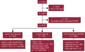 Flow chart of study participants. CVD, cardiovascular disease; CVR, cardiovascular risk; CVRF, cardiovascular risk factor; DM, diabetes mellitus, eGFR: estimated glomerular filtration rate; SCORE, Systematic Coronary Risk Evaluation.