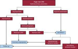 Proposed screening algorithm for coronary heart disease in diabetic patients. DM, diabetes mellitus; ECG, electrocardiogram; LVEF, left ventricular ejection fraction; SE, stress echocardiography; SPECT, single-photon emission computed tomography.