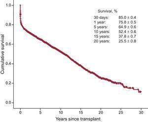 Overall survival curve for the whole series.