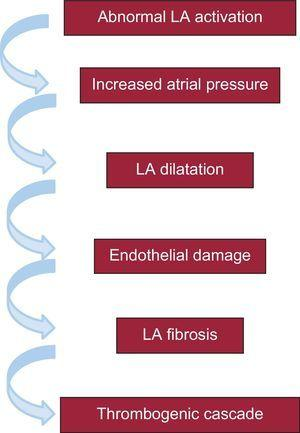 Electromechanical changes possibly explaining the association of advanced interatrial block with atrial fibrillation and the risk of cerebral embolic events (stroke and cognitive impairment associated or not with the presence of atrial fibrillation). LA, left atrial.