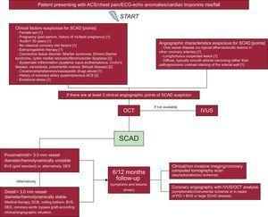 Flowchart for the diagnosis and management of SCAD. Reproduced with permission from Buccheri et al.6 ACS, acute coronary syndrome; BVS, bioresorbable vascular scaffold; DCB, drug-coated balloons; DES, drug-eluting stent; ECG, electrocardiogram; IVUS, intravascular ultrasound; OCT, optical coherence tomography; PCI, percutaneous coronary intervention; SCAD, spontaneous coronary artery dissection.
