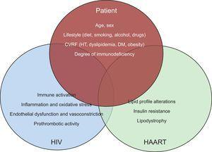 Interaction between patient characteristics, HIV infection and antiretroviral therapy in the development of cardiovascular disease. CVRF, cardiovascular risk factors; DM, diabetes mellitus, HAART, highly active antiretroviral therapy; HIV, human immunodeficiency virus; HT, hypertension.