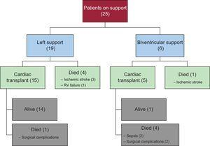 Progression of patients through the study, according to left or biventricular support. RV, right ventricular.