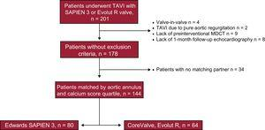 Flowchart of the study patient population. MDCT, multidetector computed tomography; TAVI, transcatheter aortic valve implantation.