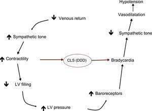 Closed loop stimulation diagram. The sensor detects the change in intracardiac impedance that occurs in the initial phase of vasovagal syndrome and activates sequential stimulation, which prevents bradycardia, decreased sympathetic tone, and hypotension. CLS, closed loop stimulation; LV, left ventricle.