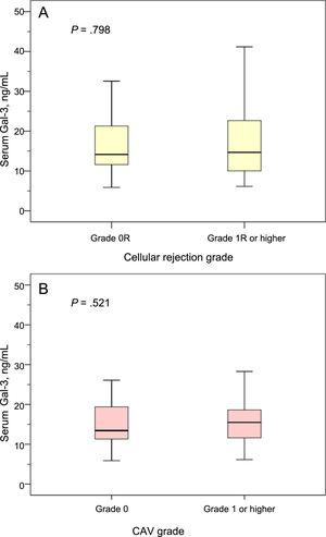 Gal-3 serum levels according to cellular rejection grade and CAV grade. A: Gal-3 serum levels in patients with and without cellular rejection grade 1R or higher at the 1-year posttransplant clinical visit. B: Gal-3 serum levels in patients with and without CAV of grade ≥ 1 at the 1-year posttransplant clinical visit. CAV, coronary allograft vasculopathy; Gal-3, galectin-3.