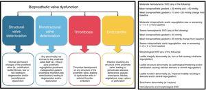 Pathophysiological mechanisms of bioprosthetic valve dysfunction (left) and European consensus definitions of structural valve dysfunction (right). SVD, structural valve dysfunction. Adapted with permission from Capodanno et al.60.