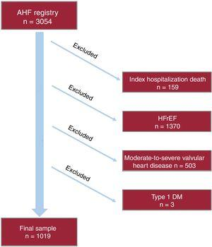 Flow chart of patient inclusion and follow-up. AHF, acute heart failure; DM, diabetes mellitus; HFrEF, heart failure with reduced ejection fraction.