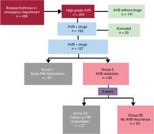 Patient flow diagram. AVB, atrioventricular block; PM, pacemaker.