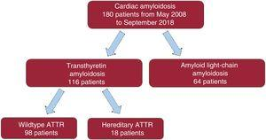 Classification of patients with cardiac amyloidosis according to subtype. ATTR, transthyretin amyloidosis.