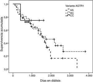 Curva de supervivencia de la variante g.1166A>C del gen AGTR1 (p=0,189).