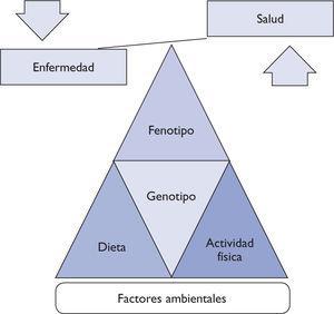 Relación genotipo-fenotipo.