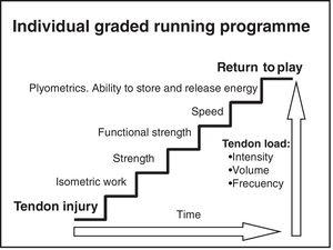 Programme to incorporate progressive load to the tendon.