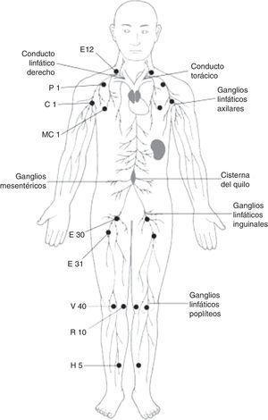 Esquema del sistema linfático y los puntos de partida de meridiano distinto.