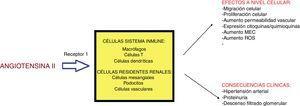 Efectos de la angiotensina II a nivel celular y clínico. MEC: matriz extracelular; ROS: radicales libres de oxígeno.