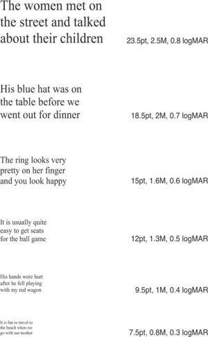 An example of MNRead sentences and their format.