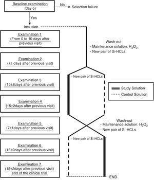 Study design flowchart.