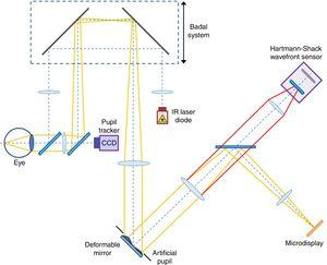 Detailed scheme of the experimental system used. Yellow lines represent the path followed by visible light. Red lines represent the last section of the path followed by infrared light.