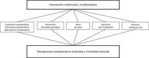 Concepto multimodal de rehabilitación precoz. Fuente: Kehlet y Dahl11.