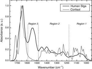 Average Fourier transform infrared spectroscopy spectra of cortisol and human salivary immunoglobulin A (pure substances).