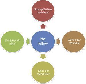 Factores que influyen en el desarrollo del fenómeno de NR.