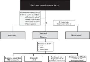Algoritmo propuesto para el manejo del fenómeno de NR establecido.