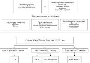 Algorithm for the differential diagnosis of primary thrombotic microangiopathy. ADAMTS13: A Disintegrin And Metalloproteinase with a ThromboSpondin type 1 motif, member 13&#59; aHUS: atypical haemolytic uraemic syndrome&#59; HUS: haemolytic uraemic syndrome&#59; LDH: lactate dehydrogenase&#59; STEC: Shiga toxin producing Escherichia coli&#59; TTP: thrombotic thrombocytopenic purpura. * Negative direct Coombs test. ** The Shiga toxin test/STEC is indicated when the patient has a history of digestive involvement or gastrointestinal symptoms. *** STEC infection can rarely trigger the underlying disease activity in some patients with aHUS.