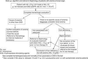Work up algorithm and referral to Nephrology of patients with anemia of renal origin.