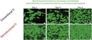 Comparison of the growth of endothelial cells in conventional supports and Nanostructured.