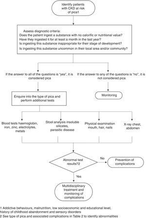 Algorithm for the diagnosis of pica. Adapted from: American Psychiatric Association,11 Woywodt and Kiss,12 Waller and Pendergrass.13