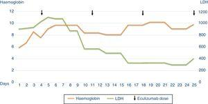 Evolution of the patient's haemoglobin and LDH.