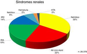 Distribution of renal syndromes at the time of renal biopsy.