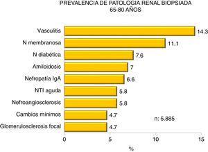 Prevalence of biopsied kidney diseases in patients 65-80 years.