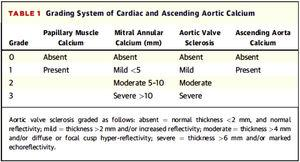 Grading system for valvular calcification and ascending aorta of Gaibazzi et al.31.