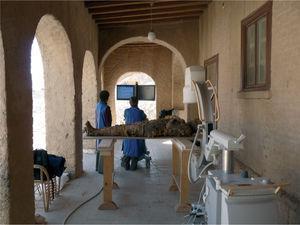 """Practicando radiografías en las momias en el porche de """"la Casa Americana"""" en El-Asasif."""