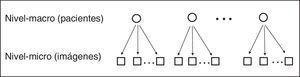 Estructura jerárquica de los datos de neuroimágenes de TC.