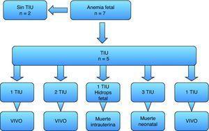 Esquema de casos de transfusión fetal intrauterina. n: número de casos; TIU: transfusión intrauterina.
