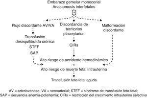 Complicaciones de los MC y sus interrelaciones. AV: arteriovenoso; CIRs: restricción del crecimiento intrauterino selectivo; SAP: secuencia anemia-policitemia; STFF: síndrome de transfusión feto-fetal; VA: venoarterial.