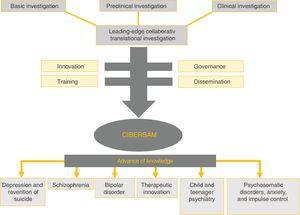 CIBERSAM objectives