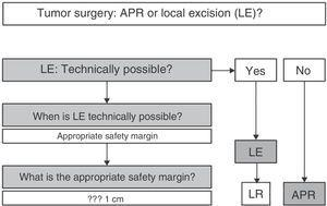 Abdominoperineal resection compared to local excision in the surgical treatment of anorectal melanoma. Treatment algorithm. APR: abdominoperineal resection; LE: local excision; LR: local recurrence.