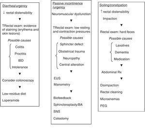 Diagnostic-therapeutic algorithm in different clinical scenarios. BA: volume increasing agents; EUS: endoanal ultrasound; PEG: polyethylene glycol; SNS: sacral nerve stimulation.