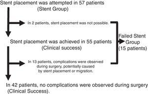 Results of stent placement attempts and subgroups.